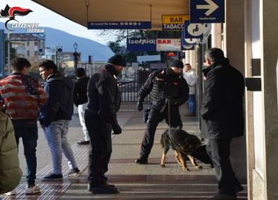 carabinieri Isernia arresti