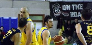 Basket, Al Discount Venafro-XL Extralight Montegranaro 54-85