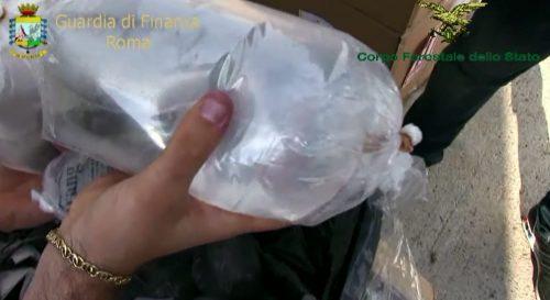 Fiumicino, stroncato un imponente traffico illegale di specie animali protette