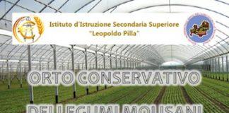 orto-conservativo-dei-legumi-molisani