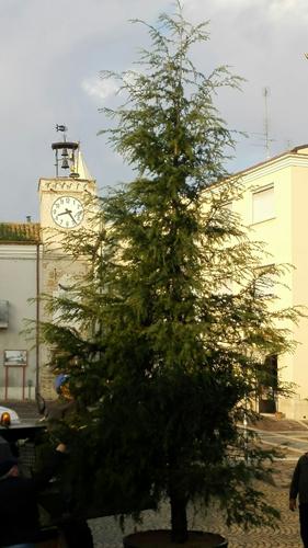 albero-di-natale-a-portocannone