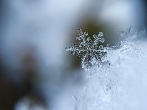 neve ghiaccio