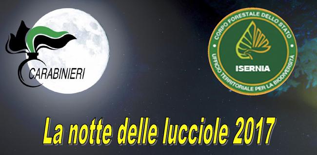 La-Notte-delle-Lucciole-2017-Isernia