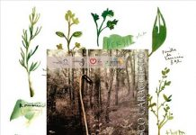 mostra locandina erbe