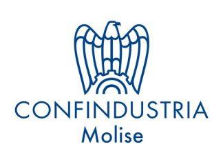 Confindustria Molise logo