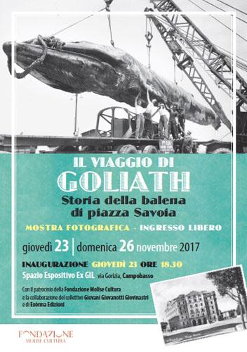 mostra Il Viaggio di Goliath