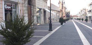 Alberi natale corso