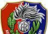 Associazione Nazionale Carabinieri logo