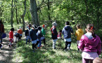 bambini bosco del cuore