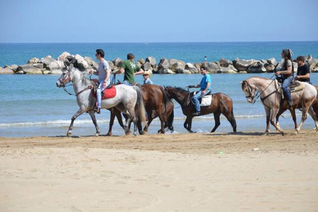 passeggiata a cavallo Termoli