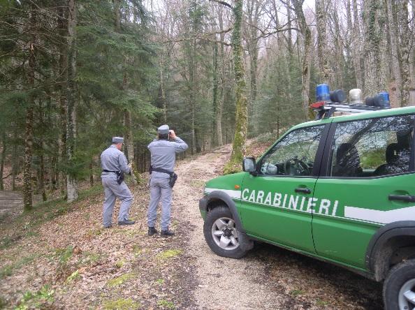 reparto carabinieri biodiversità isernia