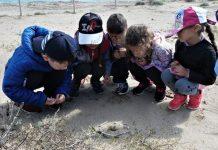 Petacciato Scuola Materna: gli alunni scoprono mondo natura