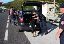 controlli Carabinieri cinofili
