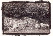 Mostra Brown Print – Altilia Bonefro