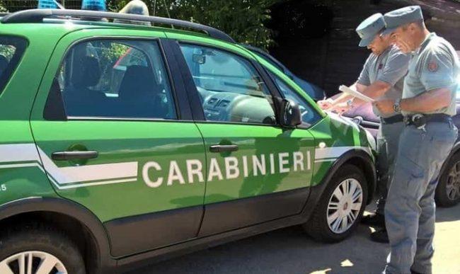 Isernia - Carabinieri forestali