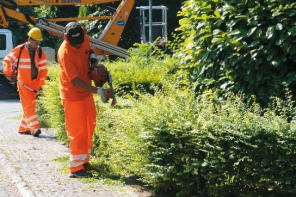 manutenzione verde