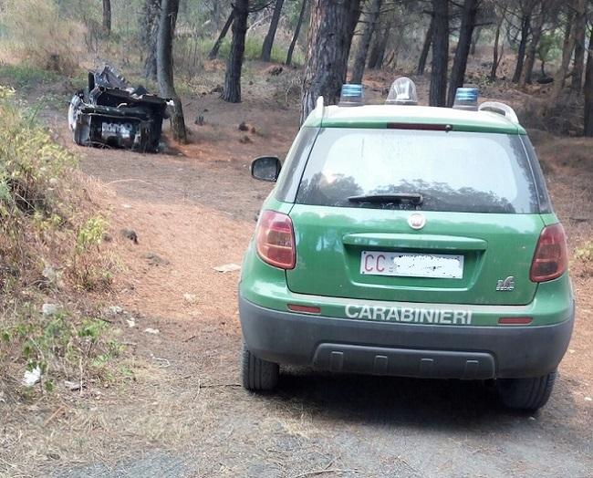 controllo carabinieri forestale
