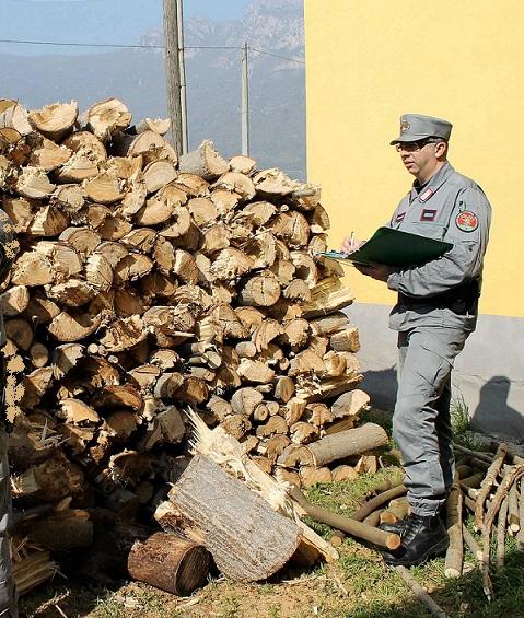 controllo cc forestale
