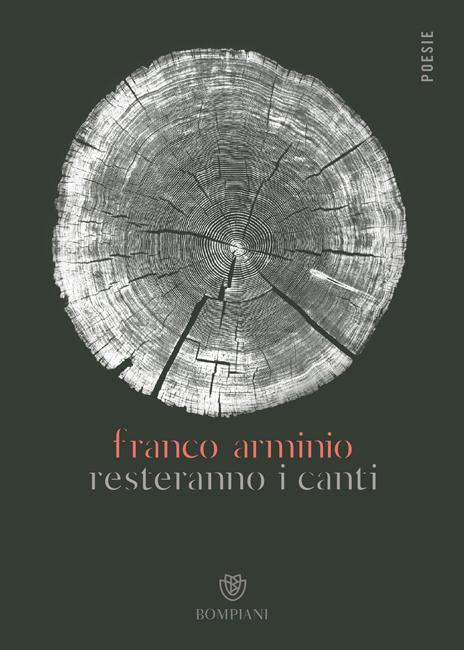 copertina libro Arminio