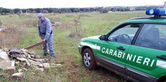 controlli cc forestale