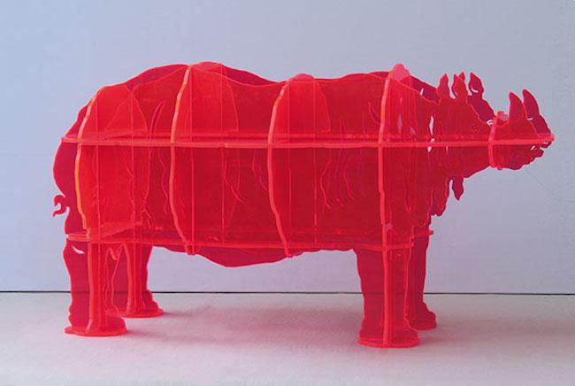 gino marotta rinoceronte