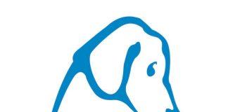 logo lndc