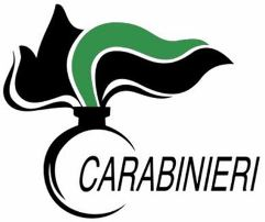 logo carabinieri forestali