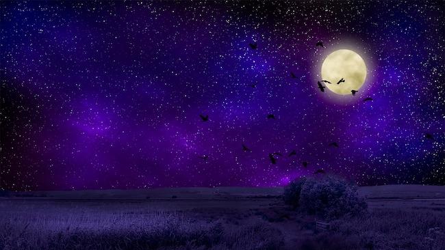 notturno stellato