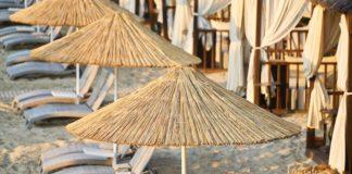 spiaggia palme lettini