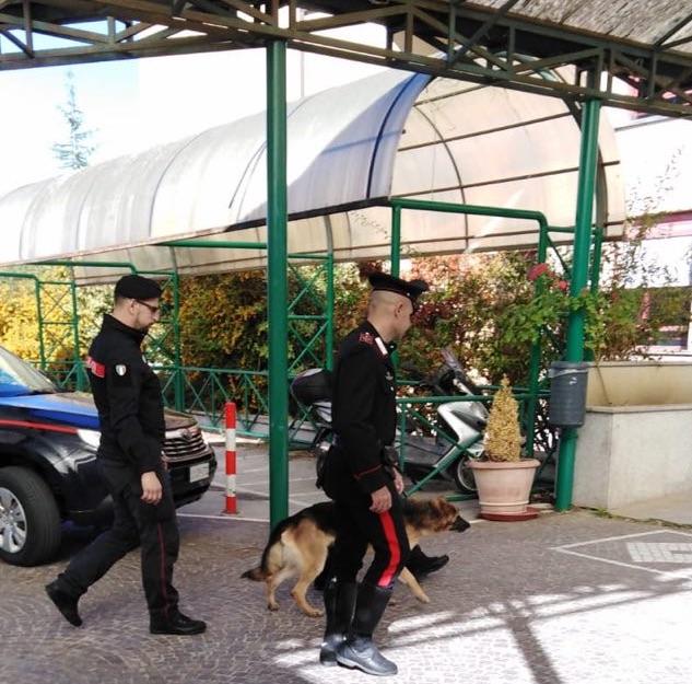 carabinieri cinofil