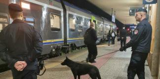 foto unità cinofila treni