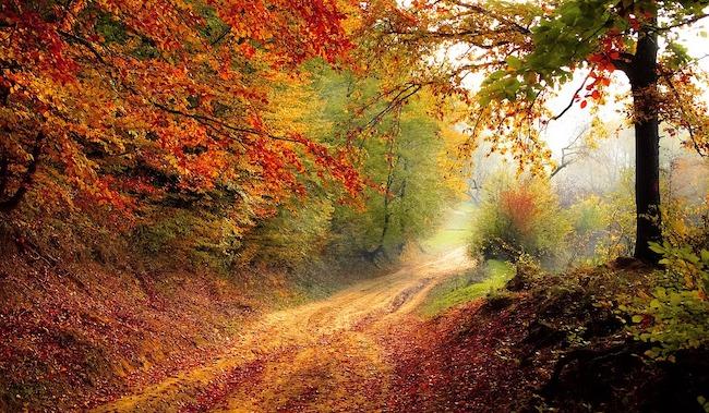 paesaggio- autunno