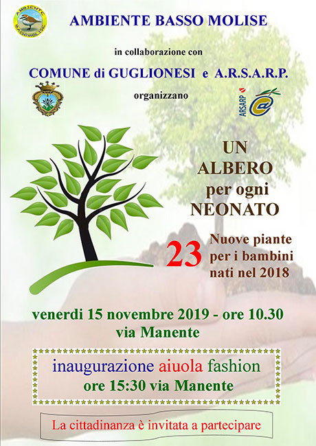 albero festa 15 novembre 2019