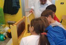 api scuola Riccia