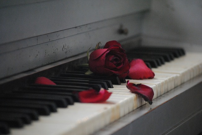 pianoforte rosa
