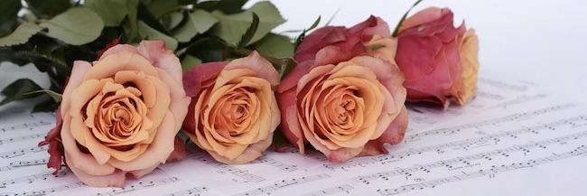 rose musica