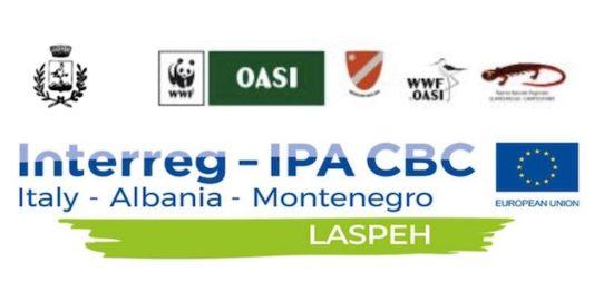 progetto laspeh