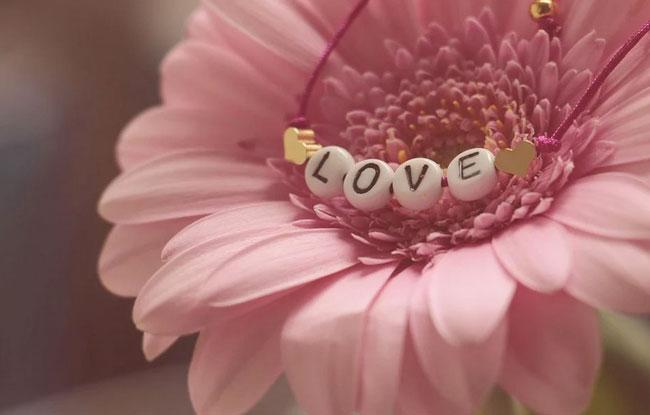 san valentino fiore