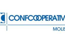 confcooperative molise logo