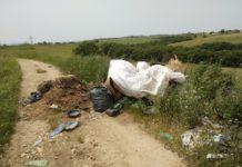 discarica bosco