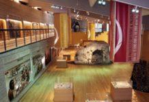museo del paleontolitico