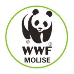 wwf molise