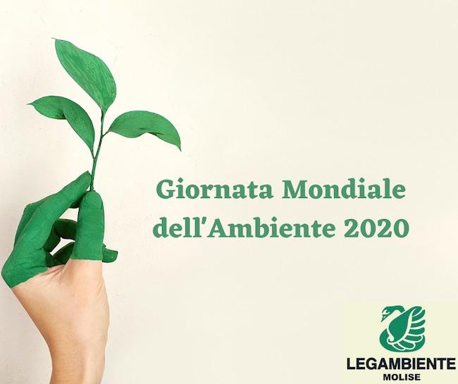 giornata ambiente 2020
