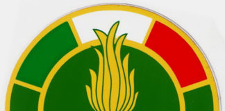 guardia di finanza logo