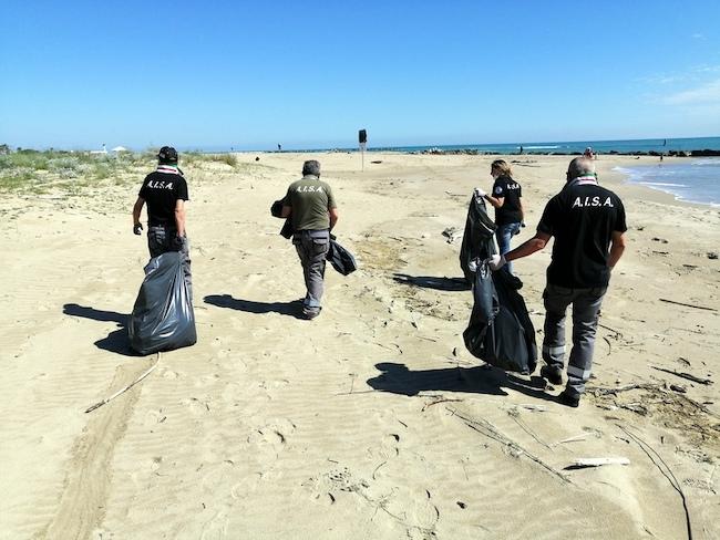 spiaggia pulita campomarino