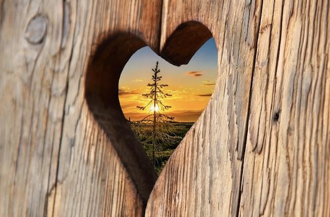 cuore legno