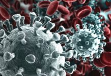 ricerca coronavirus