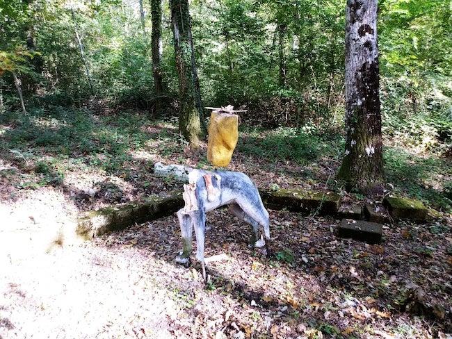 bosco delle favole riccia