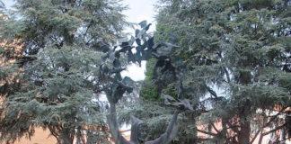 fontana san francesco