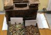 munizioni sequestrate